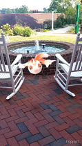 Goldeen by the Student Center fire pit